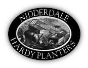Nidderdale Hardy Planters